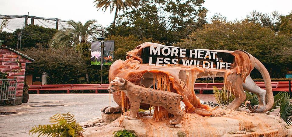 Animales se derriten contra el cambio climático en Florida