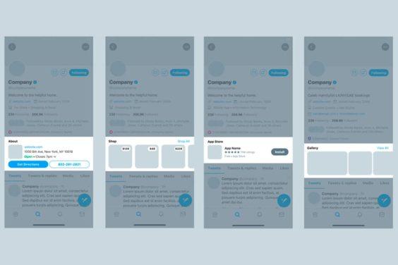 Primera vista previa de los perfiles profesionales de Twitter