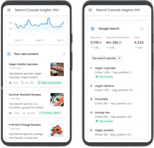 vista Search Console Insights
